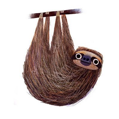 So awesome sloth, animal, hanging, not sleeping, brown with black eyes, branch of woood, bronw, cute, eyes, starring, lazyness, drawing