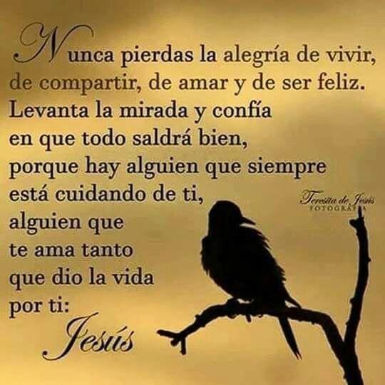 Gracias Jesús por ayudarme a soportar este gran dolor...