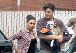 It's the day that any animal lover dreads. Ashton Kutcher reportedly had to pay an awful visit to the vet to put his unhealthy bulldog to sleep, reports Gossip Center.