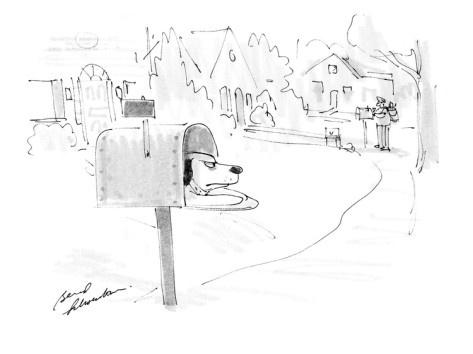 bernard-schoenbaum-mean-looking-dog-waiting-in-mailbox-for-the-postman-cartoon.jpg (473×354)