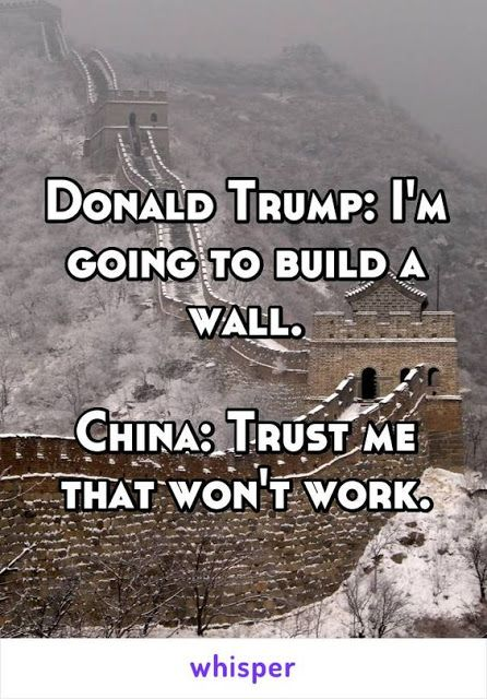 WTF Funny Political Meme: Donald Trump, Great wall