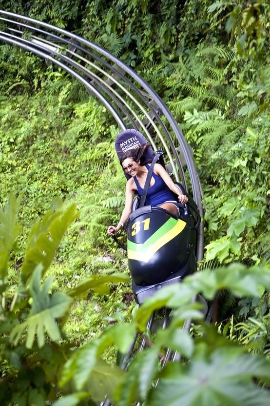 Bobsled through the jungle at Mystic Mountain, Jamaica.