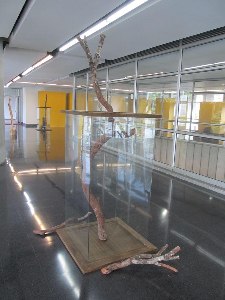 Exposición UDEA