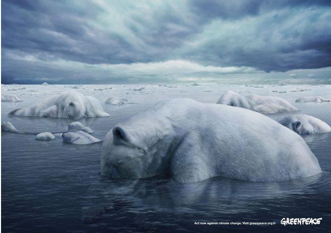 For #Greenpeace by Memac Ogilvy & Mather. #GlobalWarming #PolarBear #Ecology #SavethePlanet