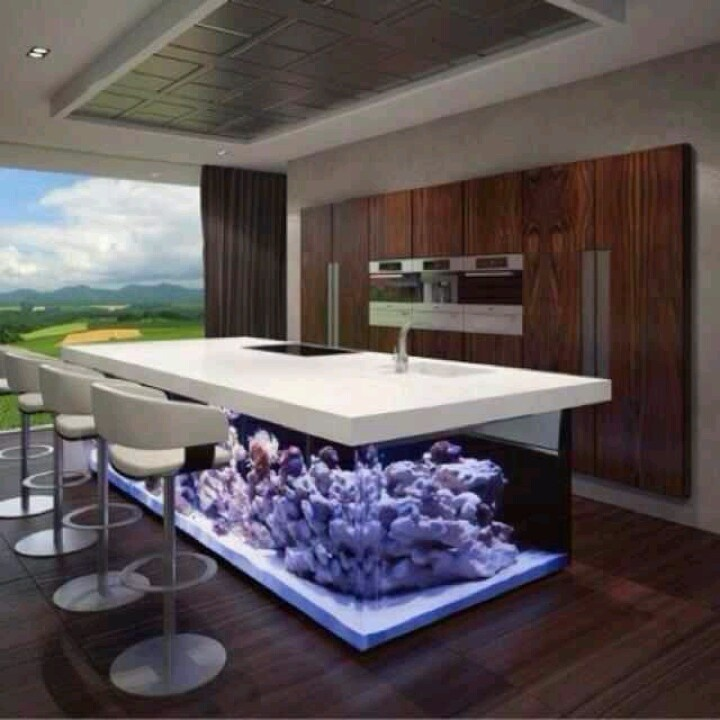 fish tank bar home decor man cave pinterest salts. Black Bedroom Furniture Sets. Home Design Ideas