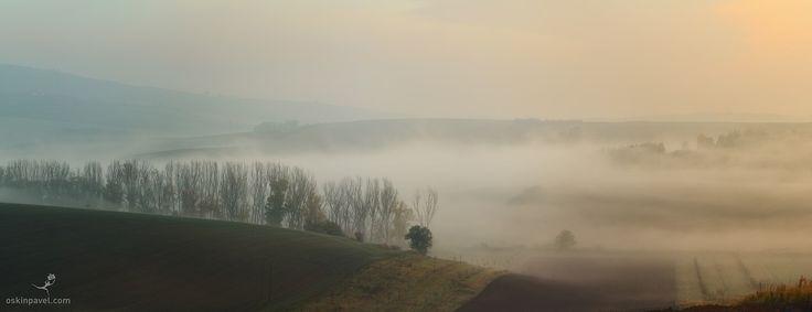 #197. Mist. Moravia. Czechia. - http://www.oskinpavel.com/