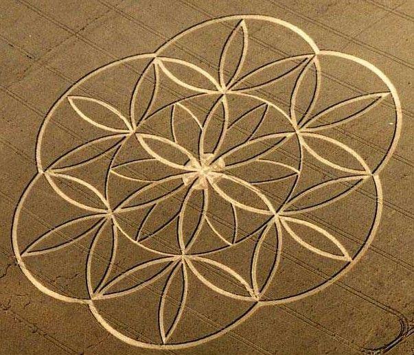 Fractal Crop circles!
