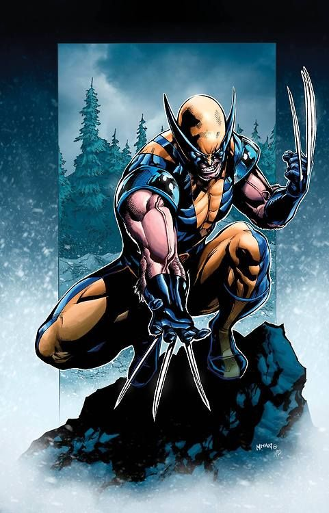 Wolverine by Pop Mahn, colours by Mark H. Roberts *