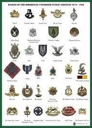 Image result for thoughts of rhodesian troops