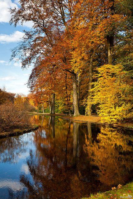 Autumn Colors by BraCom (Bram), via Flickr #ModernThanksgiving
