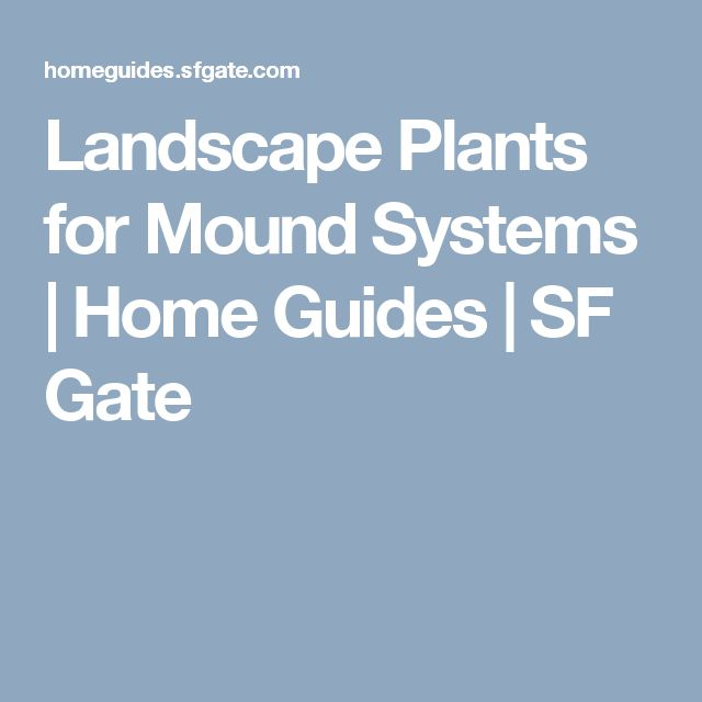 Landscape Plants for Mound Systems | Home Guides | SF Gate