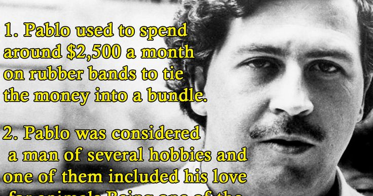 12 Bizarre Facts About Pablo Escobar, The Deadliest Drug Lord From Colombia