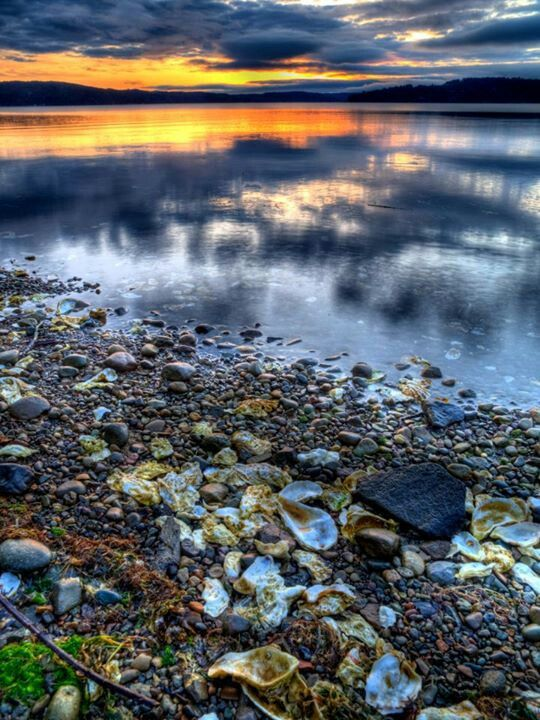 Sunset and oyster shells on Hood Canal in Washington State, USA