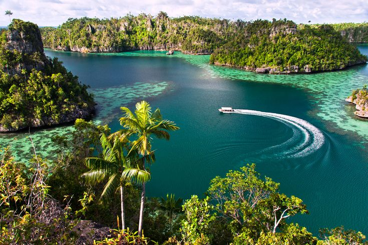 Cruise langs de Raja Ampat-eilanden (Viervorsteneilanden) De Raja Ampat-cruise brengt je naar een waar paradijs voor duikers. Enkele van de ..
