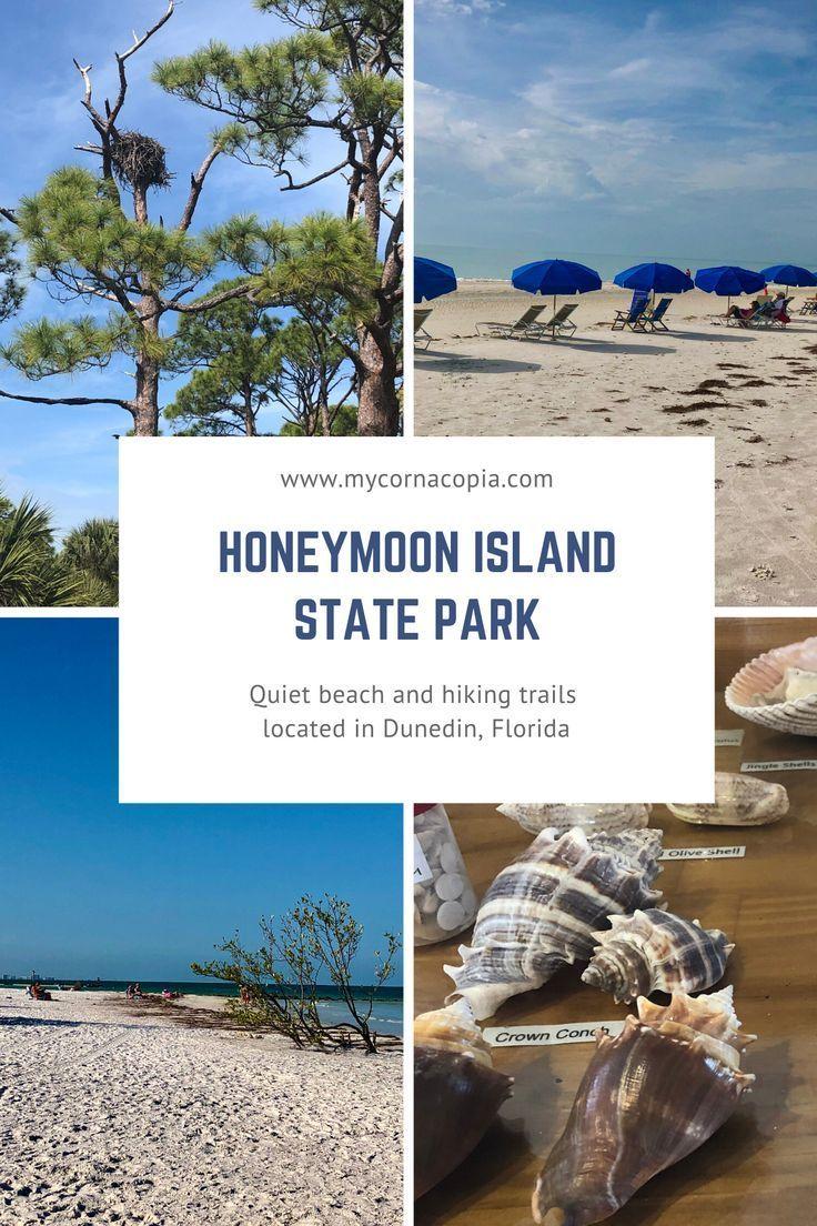 Visiting Honeymoon Island State Park My Cornacopia Honeymoon Island Florida Travel State Parks