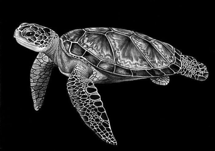 Невероятно реалистичные рисунки животных: 25 работ, выполненных шариковой ручкой - Ярмарка Мастеров - ручная работа, handmade