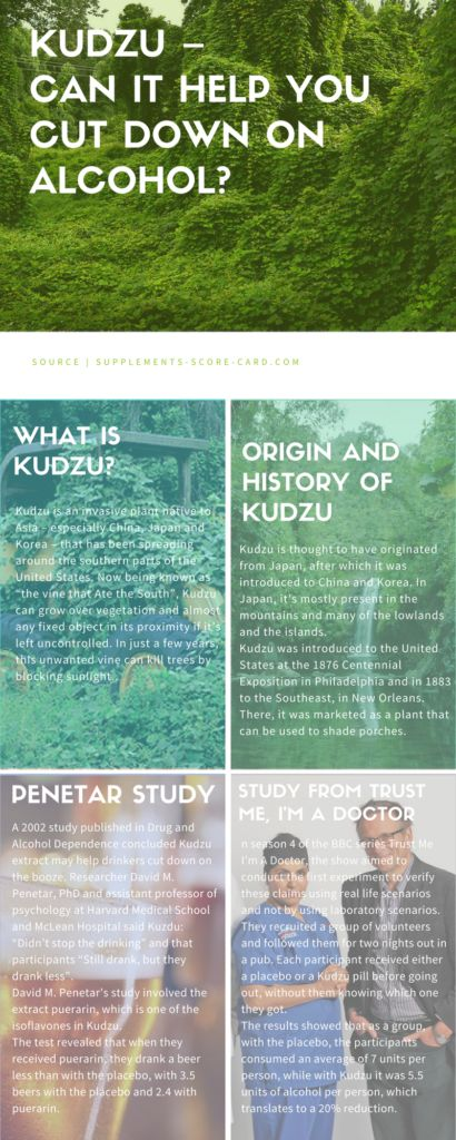 Kudzu – Can This Herb It Help You Cut Down On Alcohol?