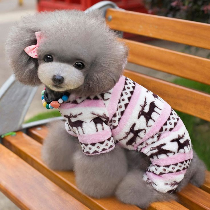 Like and Share if you want this  Winter Dog Sweater Clothes For Small Dog Soft Fleece Christmas Clothing    22.00, 12.99  Tag a friend who would love this!     FREE Shipping Worldwide     Get it here ---> https://liveinstyleshop.com/winter-dog-clothes-for-small-dog-soft-fleece-pet-dog-clothing-yorkies-chihuahua-clothes-puppy-outfit-coat-hoodie-s-xxl-30s1/    #shoppingonline #trends #style #instaseller #shop #freeshipping #happyshopping