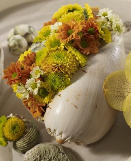 """Die Chrysanthemenfüllung in der Meeresschnecke bringt Urlaubsfeeling pur / Die Verwendung dieses Bildes ist für redaktionelle Zwecke honorarfrei. Veröffentlichung bitte unter Quellenangabe: """"obs/Blumenbüro"""""""