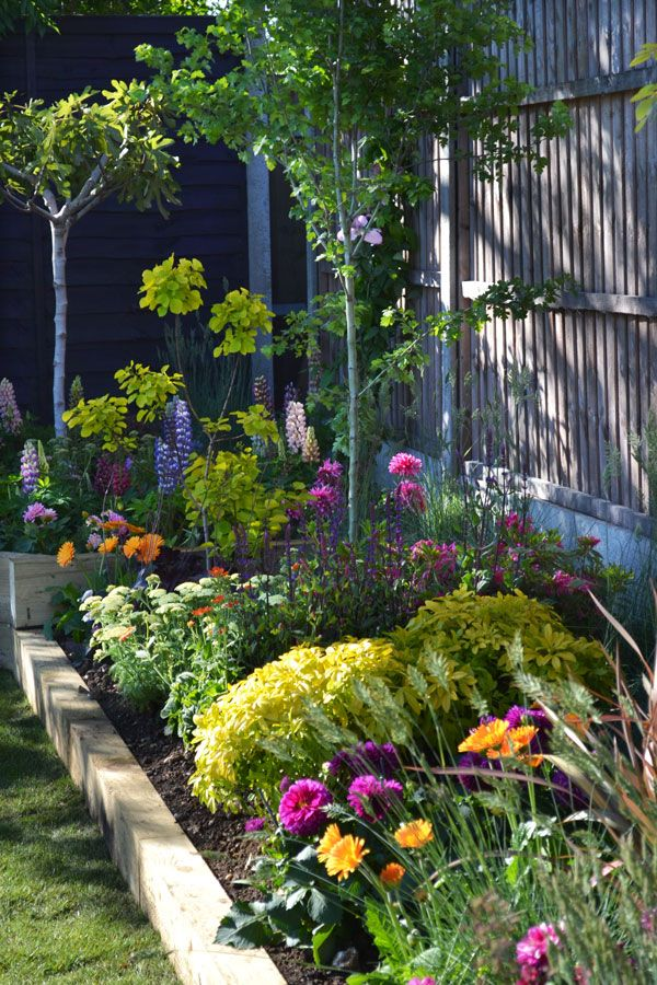 Get inspired by our gorgeous garden from episode five of Love Your Garden. We created a bright, colourful paradise with rich borders and striking foliage. Here is the plant list from the episode, so you can get the look at home. Trees We