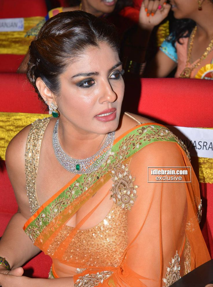 Raveena Tandon looking stunning in transparent Saree at TSR Awards