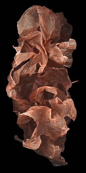 Huang Xu (China), Fragment No. 9, 2007. Rice paper, 100x50cm, edition of 12 and Chromophotograph, 244x122cm edition of 6.
