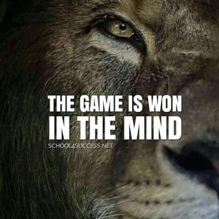 Motivational Quotes With Lion Images: Best 25+ Boxing Quotes Ideas On Pinterest