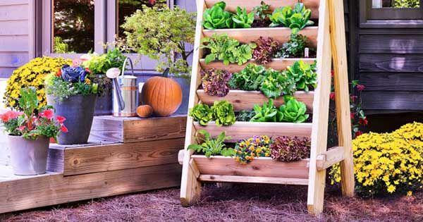 Kreatívny diy nápad s návodom ako jednoducho postaviť drevený vertikálny záhon na sadenie a pestovanie zeleniny, kvetín či byliniek.