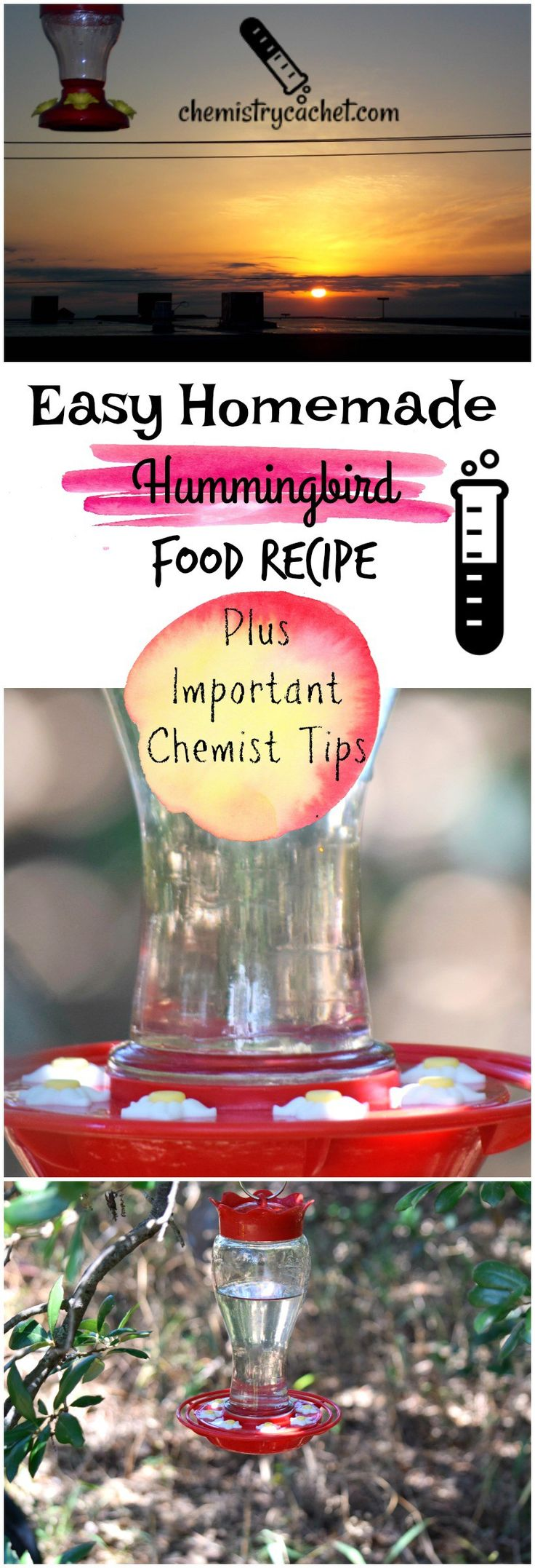 Easy Homemade Hummingbird Food Recipe plus chemist tips for keeping mold away, bees, and more on chemistrycachet.com