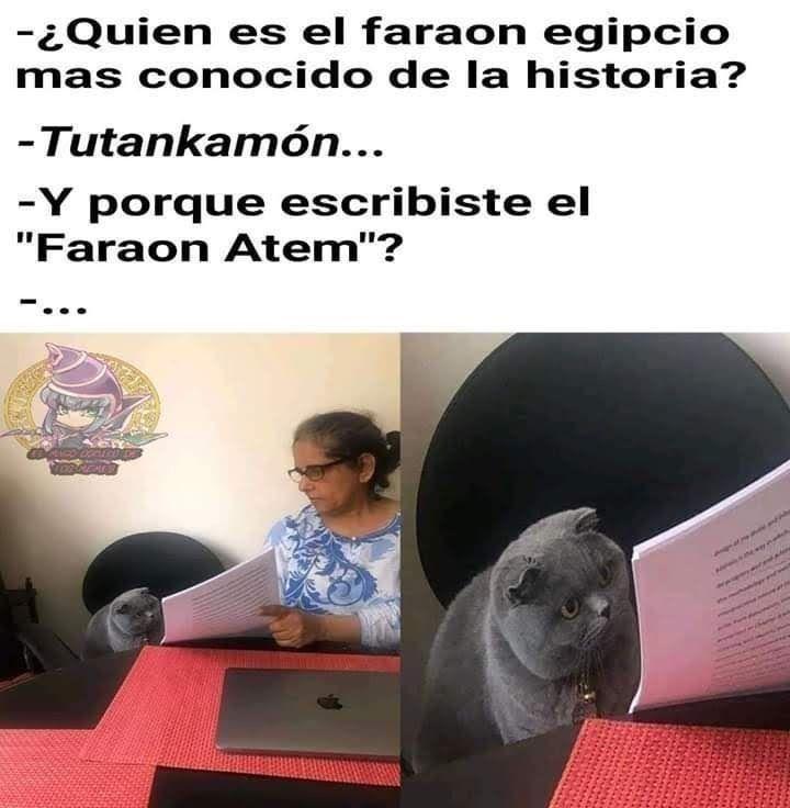 Imagenes De Yugioh Chibis Memes Funny Spanish Memes Funny Memes