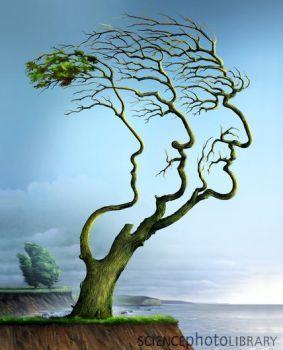 Kunst und Genealogie! Tolle Idee! Wer hat das Copyright? …