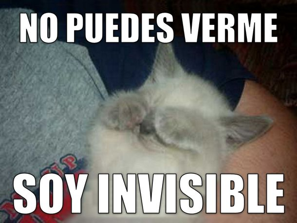 "Here's a fun meme to show students when they learn about direct object pronouns. :-)  ""No puedes verme. Soy invisible."" 