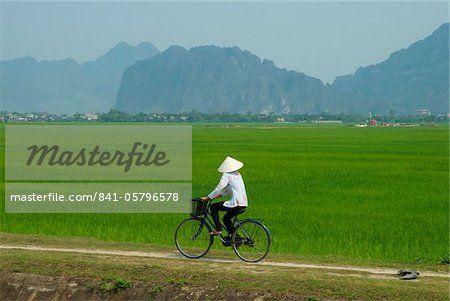 Vietnamese woman on bicycle, Tam Coc, Kenh Ga, Ninh Binh area, Vietnam…