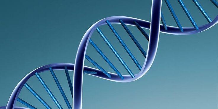 Il 21 febbraio 1953 i ricercatori Francis Crick e James Watson scoprirono la struttura della molecola del DNA rappresentandola nel caratteristico modello a doppia elica. La sensazionale scoperta fece vincere ai due scienziati un premio Nobel.