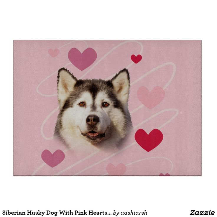#SiberianHusky #Dog With #Pink #Hearts #CuttingBoard #love #valentinesday #heart