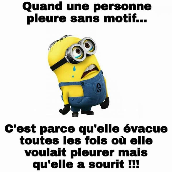 182 best images about les minions on pinterest humor humour cops and sons. Black Bedroom Furniture Sets. Home Design Ideas