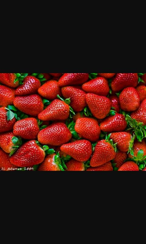 Strawberry-fresa
