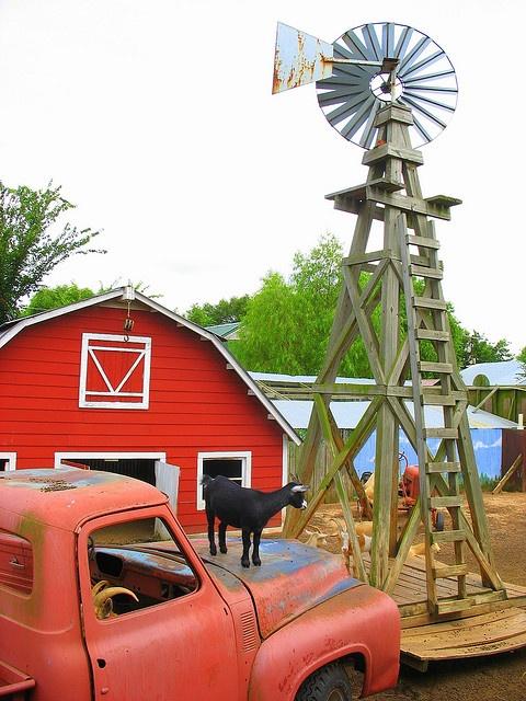 :) Windmill