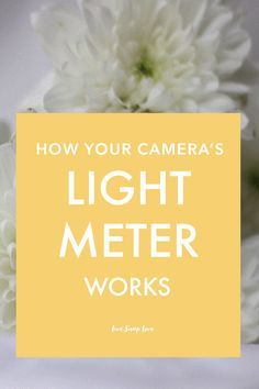 Get accurate exposure by understanding how your camera's light meter works. Click through to read this photography tutorial for beginners!