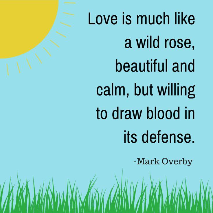 Love Quotes11