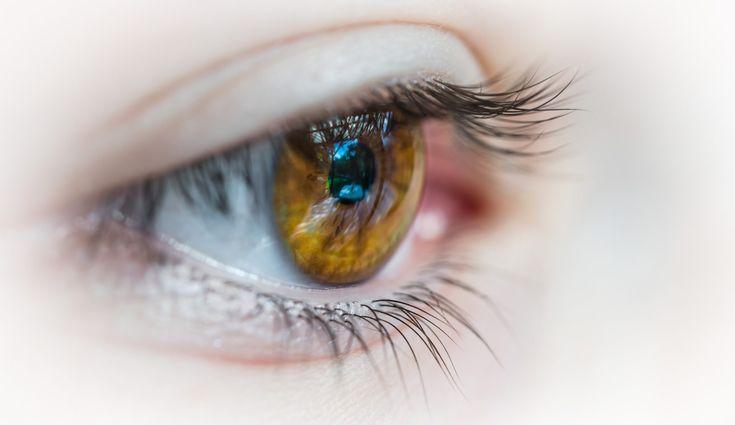 AMD altersabhängigen Makuladegeneration Gelbe Fleck Lutein und Zeaxanthin im Auge Lutein und Zeaxanthin der Gelbe Fleck  AMDoderalters abhängigen Makuladegeneration - der Gelbe Fleck Lutein und Zeaxanthin im Auge Lutein und Zeaxanthin im Gelben Fleck der Netzhaut- Lutein und Zeaxanthin sind orangegelbe Carotinoide pflanzlicher Herkunft die beim Menschen auf derNetzhaut sind , derGelbe Fleck