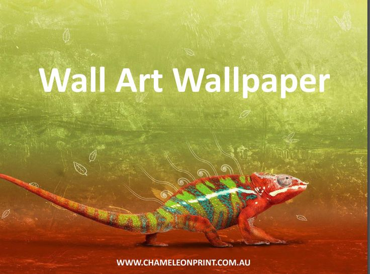 We custom print wallpaper. Use your own images, your own ideas, your own photos and design your own wall art wallpaper.