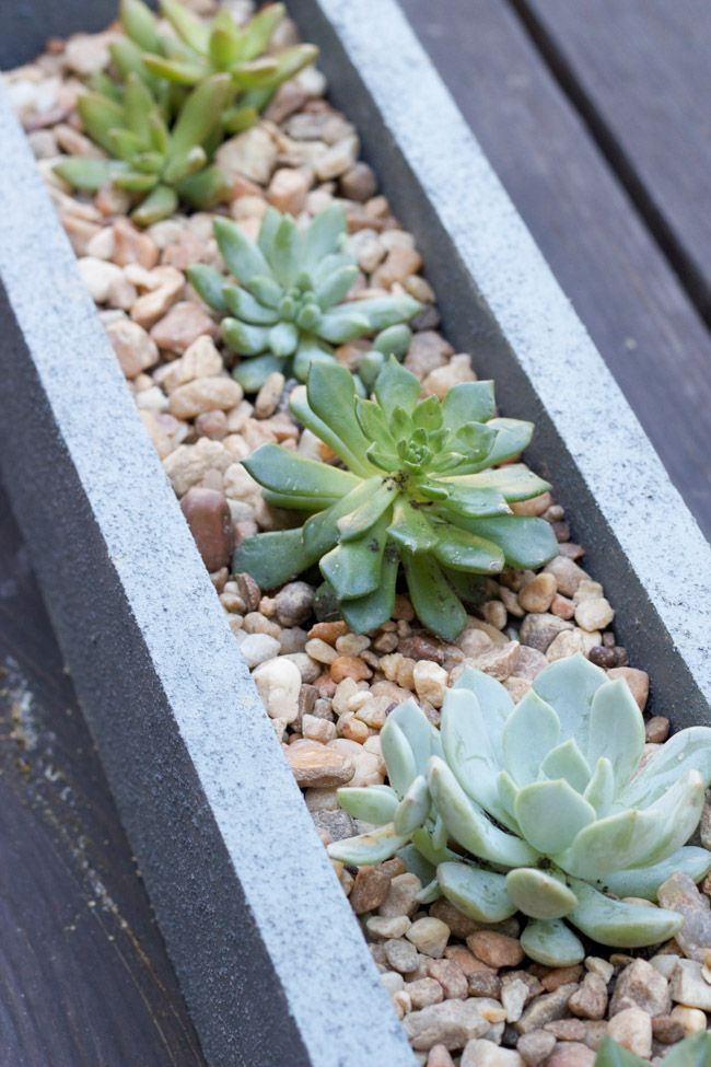 Check out this tutorial for a DIY faux concrete planter using FolkArt® Painted Finishes in ...