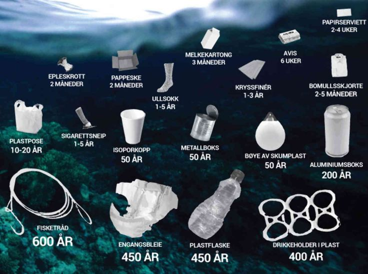 Plast brytes ned til små partikler, og det er usikkert om disse partiklene brytes ned i det hele tatt. De kan være evigvarende. Foto: Miløstatus.no