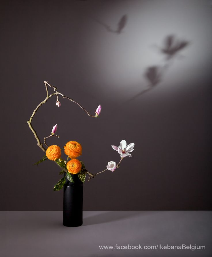 """where are you now ? in the silence of the room the echo of an answer""  Haiku: Gilberte Neyt.  Ikebana: Ilse Beunen  Photography: Ben Huybrechts"