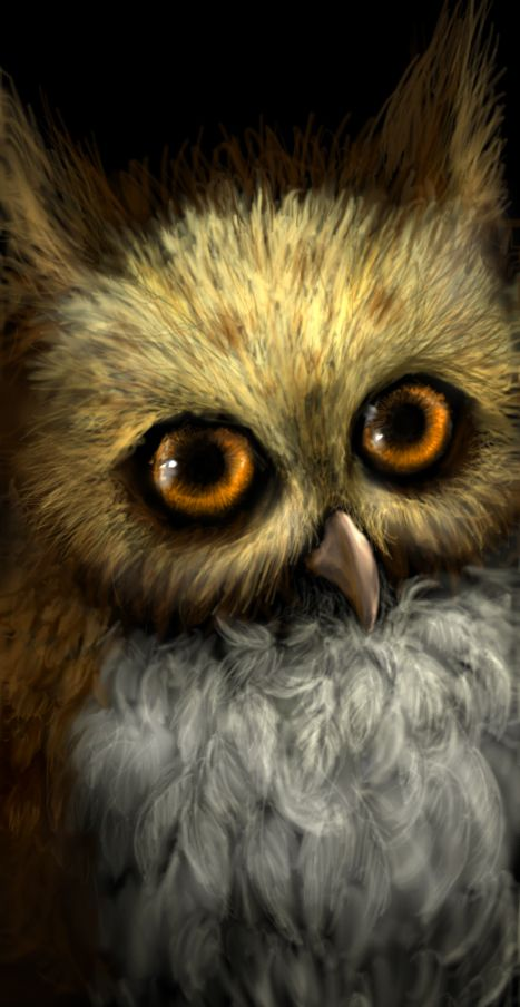 Owl in the Dark by ~Chaos-Flower Digital Art / Paintings & Airbrushing / Animals