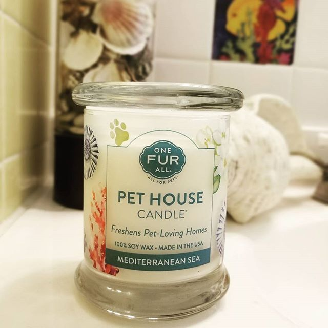 Mediterranean Sea Pet House Candles make your home smell Great! 🐟🐠🐙🐚 #onefurall #onefurallpets #petcandles #pethousecandles #pethouse #petodorcandles #handpoured #madeinamerica #madeinusa #dogs #cats #dogmom #catmom #petlovers #candles #gifts #giftideas #cute #smellsamazing #smellsgood #mediterraneansea #furkids #instacandle #ilovecandles #candleaddict