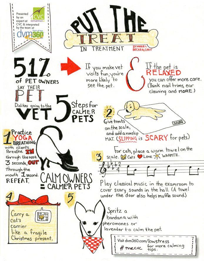 Best Work Stuff Images On   Veterinary Medicine