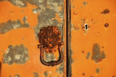 Ruggine  | Az. agric. Forcella | Abruzzo, Italia   #BrillanteSeverina   #door #rust #orange #lion #doorknocker