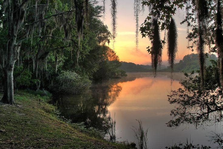 Lake Alice at Sunrise. Gainesville, Florida.